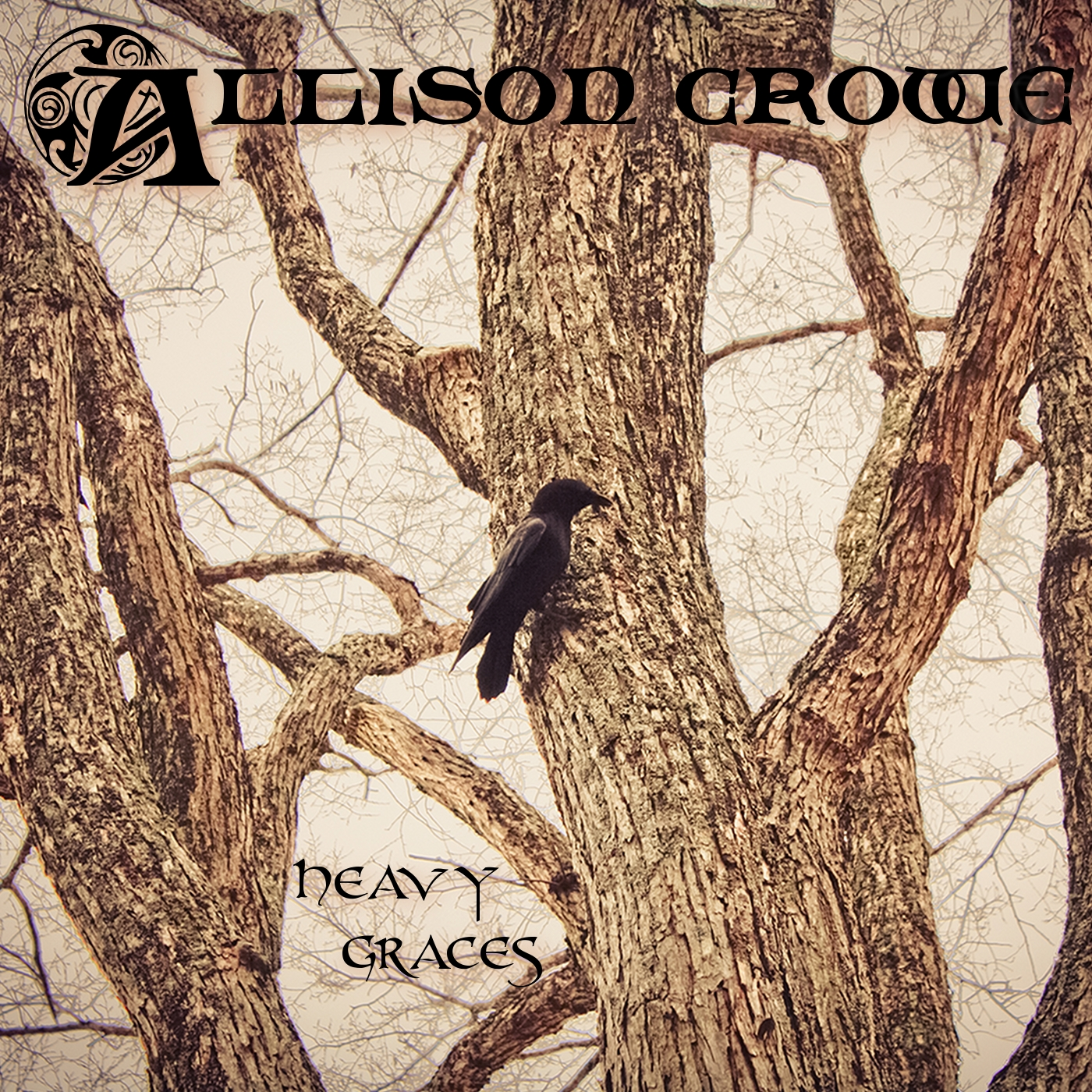 Heavy Graces - Allison Crowe - album cover art